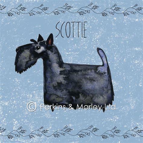Scottie Cards - scottie card pack of 6 perkins and morley ltd