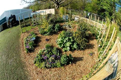 Backyard Permaculture Design by Permaculture Design Garden Designs