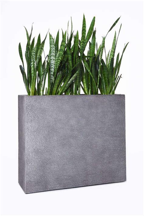 pflanzkübel fiberglas grau pflanzk 252 bel raumteiler 90 cm hoch bestseller shop f 252 r