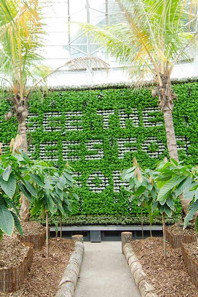 tropical plant rentals a living masterpiece at the royal botanic garden sydney