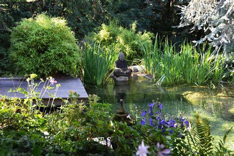 Garten Teich Pflanzen pflanzen f 252 r den gartenteich gartentechnik de