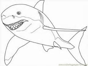 Great White Shark Coloring Pages Printable sketch template