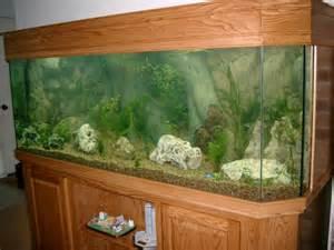 250 Gallon Fish Tank Dimensions 250 Gallon Fish Tank Dimensions http
