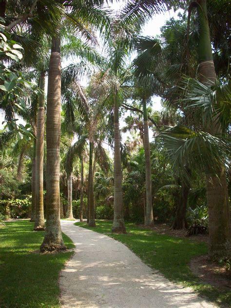 Strolling Mckee Botanical Gardens Vero Beach Fl Botanical Garden Vero