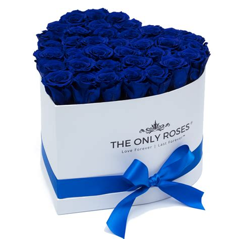 Box A Single Blue Preserved Flower Represent Unattainable last a year royal blue preserved roses white huggy box the only roses