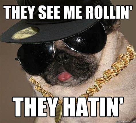They See Me Rollin Meme - they see me rollin they hatin gangster pug quickmeme