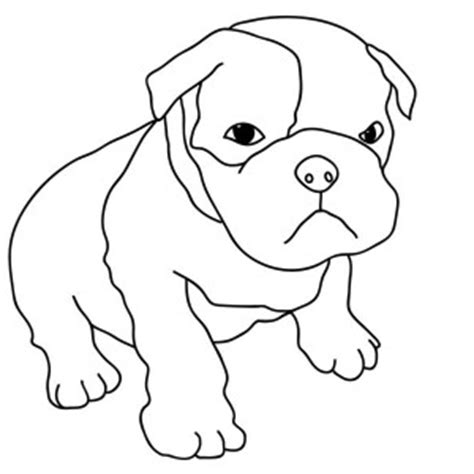 american bulldog coloring pages american bulldog coloring pages pictures to pin on