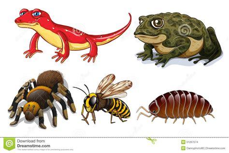 Small Animals Type C small animals stock vector image 51267574