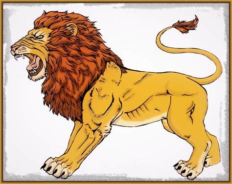 imagenes leones dibujos imagenes de leones en dibujos archivos imagenes de leones