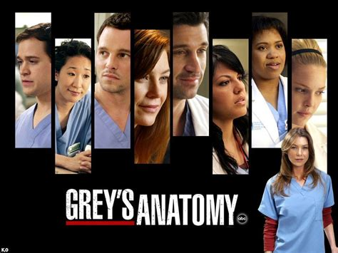 The Of Greys grey s anatomy grey s anatomy wallpaper 1663492 fanpop