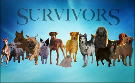 survivors dogs the survivors warriors seekers survivors sweet the o jays and