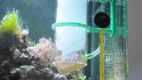 beleuchtung 60l aquarium sander piccolo 1 ausstr 246 mer doovi