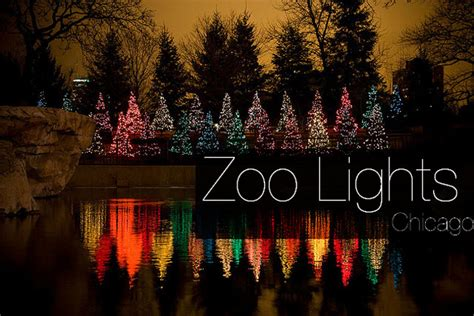 zoo lights chicago