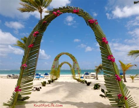 wedding arch palm decorations beach wedding decoration