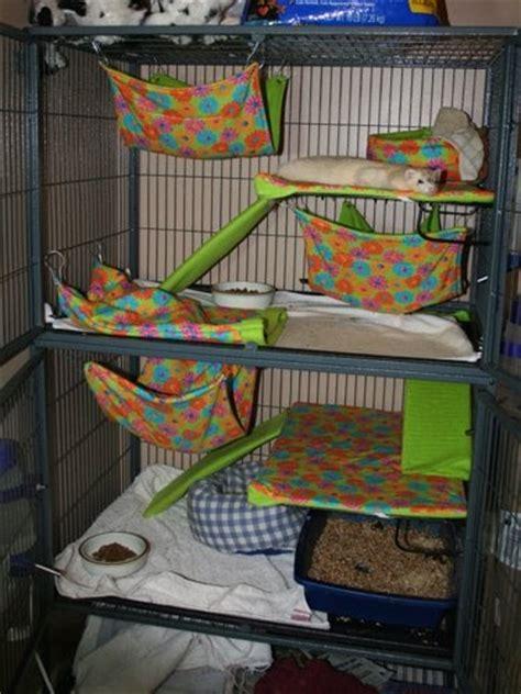 ferret bedding little dooks new ferret bedding set
