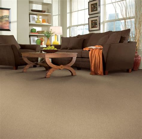 Which Carpet Fiber Is The Most Stain Resistant - soft fiber carpet shop all carpet options at martin s