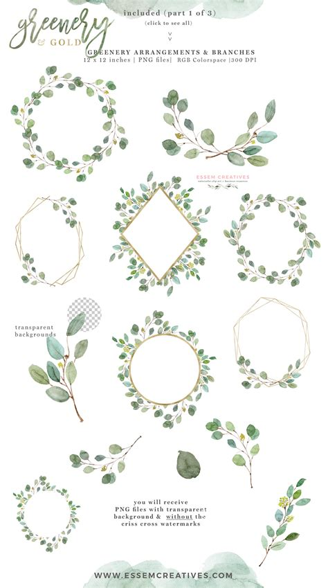 greenery and gold wedding invitation graphics eucalyptus branch leaves clipart for invitations