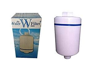 Inline Shower Water Softener by Inline Shower Water Filter X1 Filters Lime And Chlorine