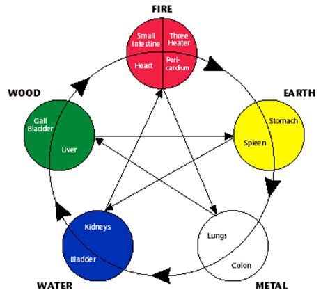 the 5 elements of the five elements traditional chinese medicine tcm part 3 the healing sphere