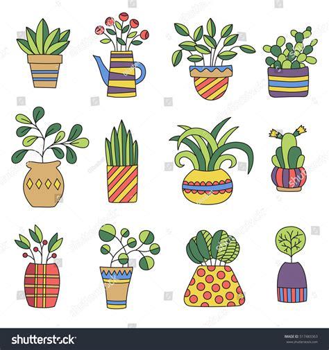 doodle plants home plants different pots doodles stock vector