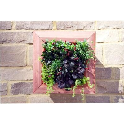 Wall Planters Home Depot by Pennington 17 5 In Cedar Framed Wall Planter 100512952 The Home Depot
