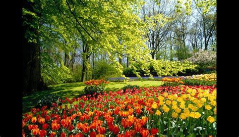 imagenes jardines mas hermosos mundo conoce a los jardines m 225 s hermosos de todo el planeta fotos