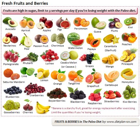 vegetables on paleo diet paleo lose weight fruit nutrition weight loss supplements