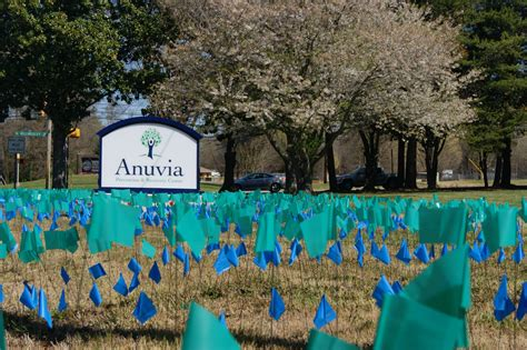 Detox On Billingsley Road by Anuvia Prevention And Recovery Center