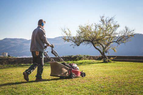lavoro giardiniere arrivano 900 assunzioni si cercano addetti pulizie