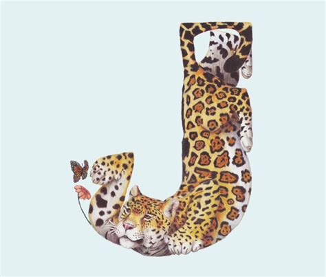 Animal J by 26 Best Images About Animal Alphabets On S