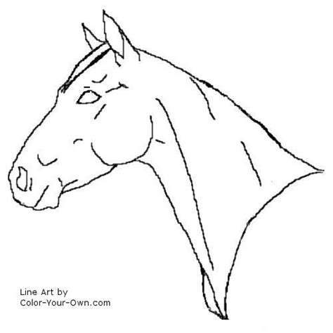 coloring pages of quarter horses quarter horse mare headstudy coloring page