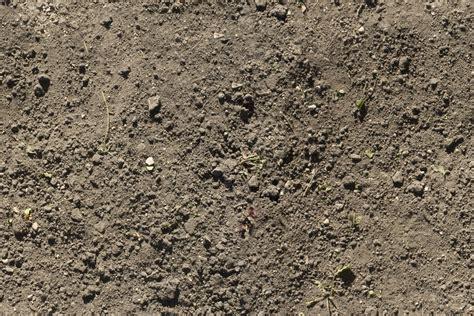 Dirt Finder Search The Nimba Jimbian Review Dirt Dirt