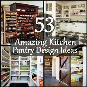 53 amazing kitchen pantry design ideas diy home life