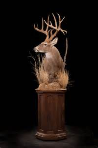 The Mule Barn Deer Pedestal Mount Additions Pictures To Pin On Pinterest