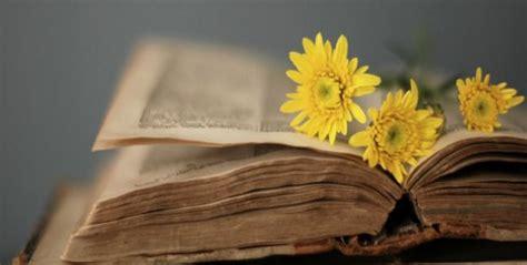 il fiore libro 23 aprile libri e fiori in biblioteca di bormio per la