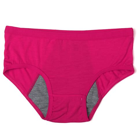 brief knicken womens briefs knickers leakproof ebay
