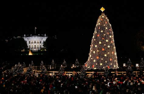 christmas trees dc national tree 2017 lighting tickets more
