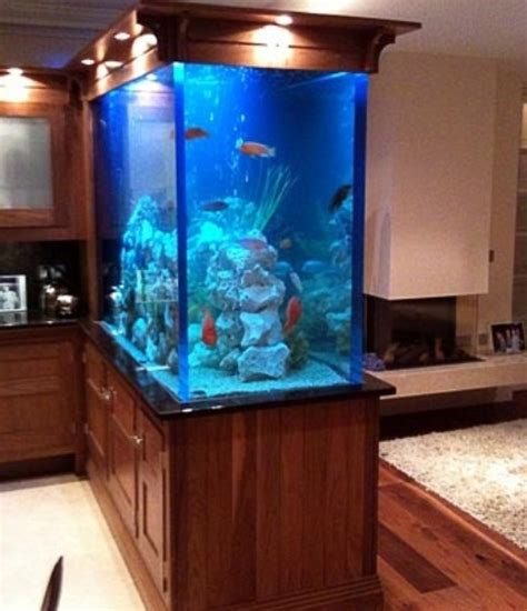 55 original aquariums in home interiors digsdigs