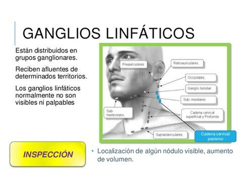 cadenas ganglionares cara exploraci 243 n de cuello y gl 225 ndula mamaria
