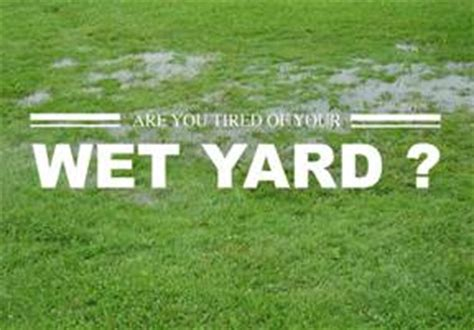 soggy backyard solutions go with the flow drain your yard properly piedmont