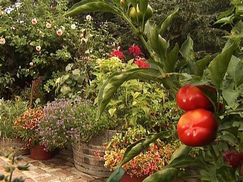interior ideas hgtv small garden ideas