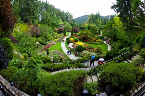 imagenes de jardines estilo japones eldiariodeirene zen para principiantes los mejores