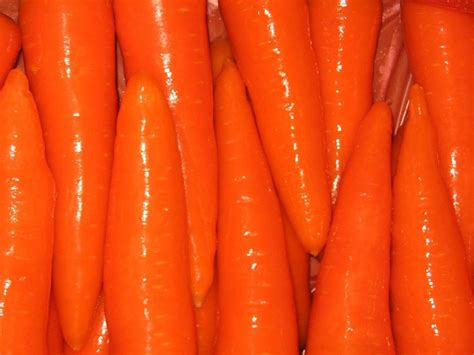 coding for carrots solutions china fresh carrot china carrot fresh carrot
