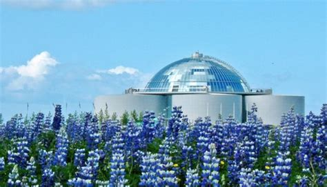 10 Great You To See by The Top 10 Sights To See In Reykjav 237 K My Guide Reykjavik