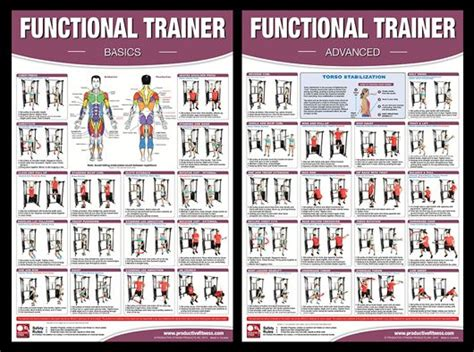 printable fitness poster 1000 images about fitness cable machine on pinterest