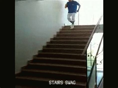 pug stairs gif stair gif images