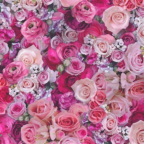 Urban Flowers Pink Roses Wallpaper