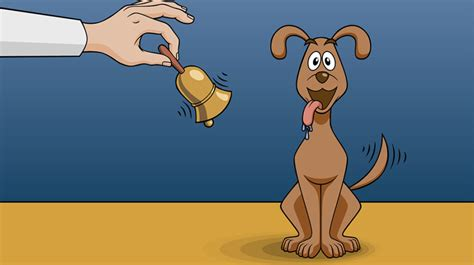 pavlov dogs classical conditioning and pavlov s experiment fos media students