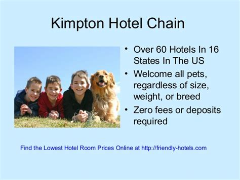 friendly hotel chains best pet friendly hotels chains in the usa that welcome your pet