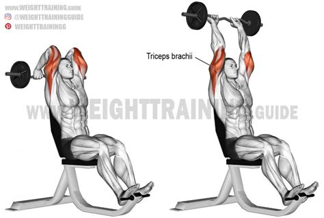 ez bar bench press overhead ez bar triceps extension exercise instructions